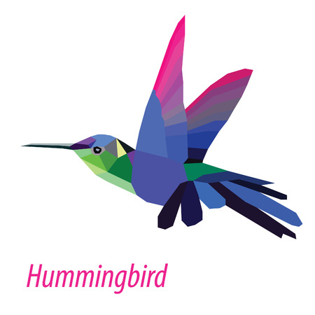 head of animal: colorful Hummingbird bird low poly design isolated on white background Illustration