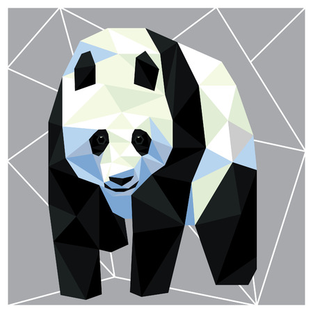 Giant Panda bear low poly design isolated on grey and white background. Animal card design.
