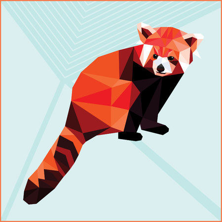 low poly: Red Panda colorful low poly design isolated on light background. Animal card design.