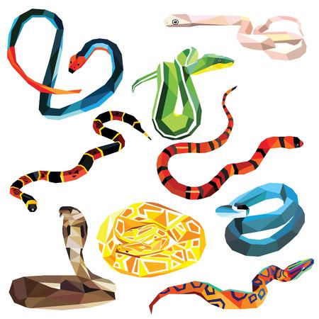 python: Snake set of colorful snakes low poly design isolated on white background. Python, Blue Racer, Boa, Coralsnake, Milksnake, Ratsnake, Cobra, Shieldtail