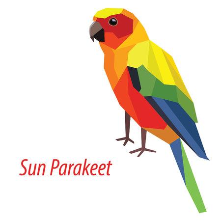 ornithological: colorful Sun Parakeet bird low poly design isolated on white background