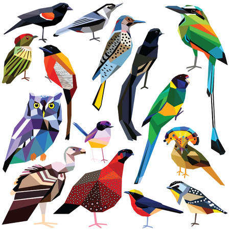 griffon: Birds-set colorful birds low poly design isolated on white background Parrot,Owl,Widowbird,Woodpecker,Fairywren,Trogon,Blackbird,Vulture,Tragopan,Manakin,Flycatcher,Pardalote,Motmot,Nuthatch,Gonolek Illustration