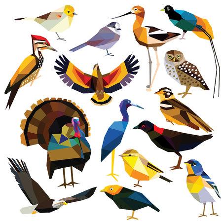 Birds-set colorful birds low poly design isolated on white background. Avocet,Eagle,Rail, Bird of paradise ,Flameback,Manakin,Jay,Kea,Heron,Owl,Parula,Longspur,Verdin,Turkey,Warbler