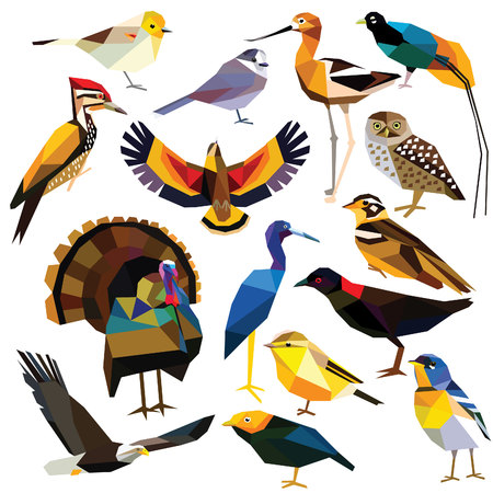 Birds-set colorful birds low poly design isolated on white background. Avocet,Eagle,Rail, Bird of paradise ,Flameback,Manakin,Jay,Kea,Heron,Owl,Parula,Longspur,Verdin,Turkey,Warbler