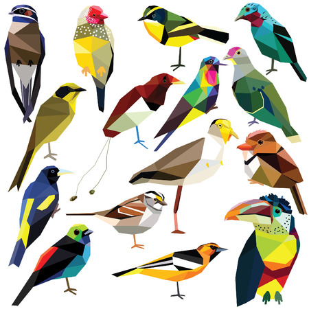 finch: Birds-set colorful birds low poly design isolated on white background Finch,Oriole,Puffbird,Aracari,Hummingbird,Paradise bird,Tyrant,Lapwing,Tanager,Dove,Cotinga,Treeswift,Sparrow,Cacique,Honeyeater Illustration