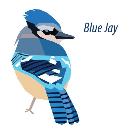 白い背景に分離されたカラフルなブルー ・ ジェイ ・鳥低ポリ デザイン  イラスト・ベクター素材