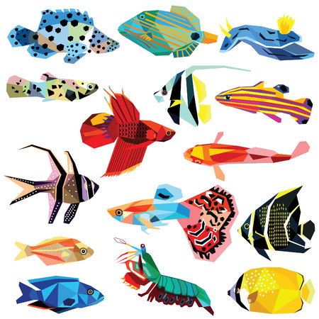 low poly: fish set colorful fish low poly design isolated on white. Cichlids,Cardinalfish,Koi fish,Basllet,Guppy,Angelfish,Grouper,Lochi,Glassy fish,Molly,Triggerfish,Shrimp,Coralfish,Betta,Butterflyfish.