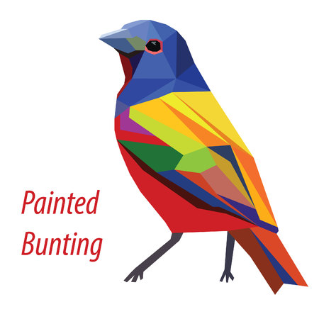 colorful Painted Bunting bird low poly design isolated on white background Illustration