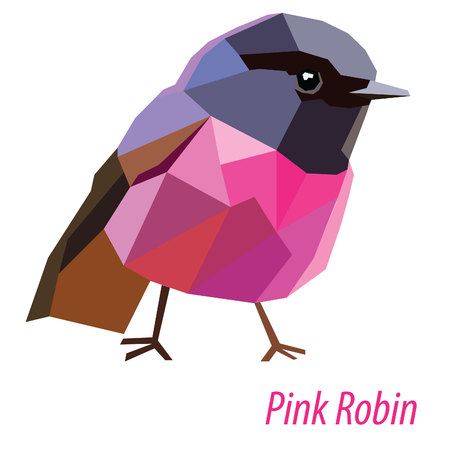 colorful Pink Robin bird low poly design isolated on white background Illustration