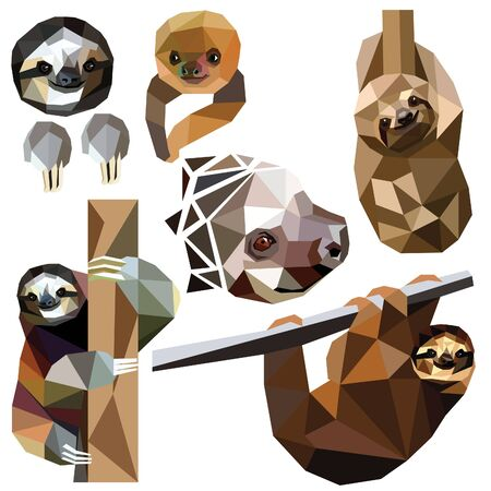 Sloth set colorful low poly animal designs isolated on white background. illustration. Collection in a modern style.