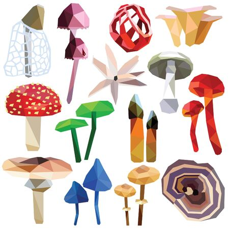 Mushroom set colorful low poly designs isolated on white background. poisonous food illustration. Collection of fungus in a modern style. Illustration