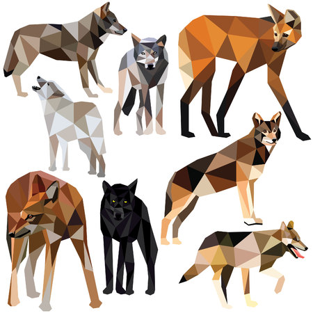 Wolves set colorful low poly animal designs isolated on white background. illustration. Collection in a modern style.
