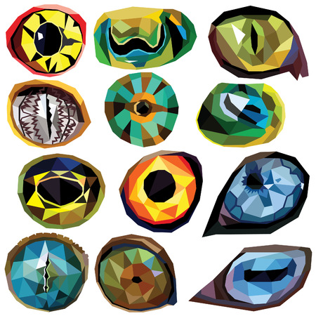 Animal eye set colorful low poly designs isolated on white background. illustration. Collection in a modern style. Illustration