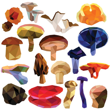 campestris: Mushroom set colorful low poly designs isolated on white background. edible food illustration. Collection of fungus in a modern style.