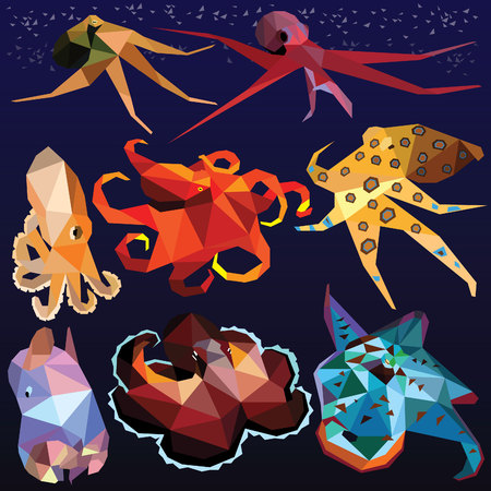 Octopus set colorful low poly animal designs isolated on dark background. Vector illustration. Collection in a modern style.