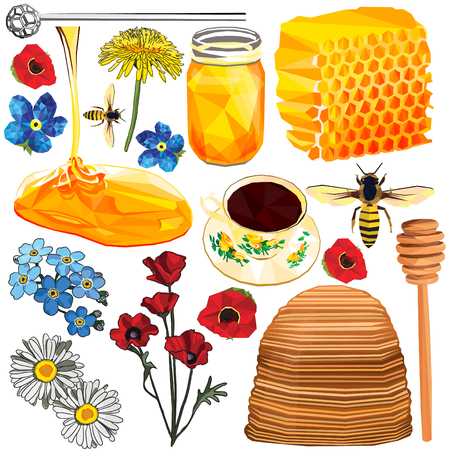 Honey set colorful low poly and hand drawn designs isolated on white background. Vector illustration of natural vegan sweetener in modern style. Full sweet honey collection. Illustration