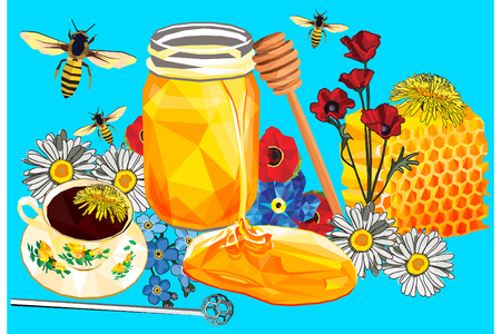 Honey set colorful low poly and hand drawn designs isolated on blue background. Vector illustration of natural vegan sweetener in modern style. Full sweet honey collection.