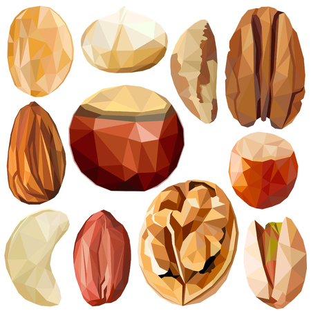Exotic nut set colorful low poly designs isolated on white background. Vector edible food illustration. Collection of nut plants in modern style. Organic raw wild fruits.