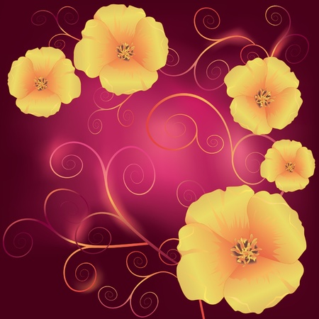 Beautiful California golden poppies - official state flower of California and decorative swirls on a dark red background  Vector illustration Vector