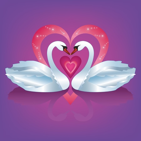 swan pair: Illustration of two graceful  white swans with heart - the symbol of love and devotion. Vector illustration.