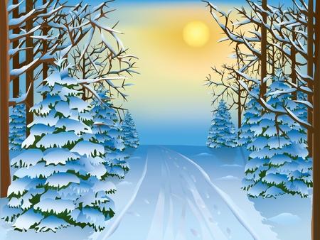 snowdrifts: Bella realistico paesaggio - una foresta di inverno. Illustrazione vettoriale.
