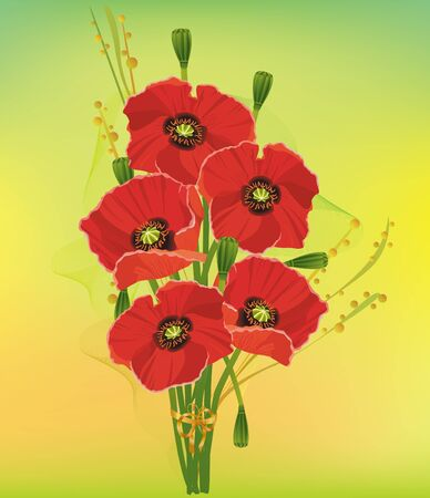 Beautiful bouquet of red poppies with decorative elements on a colorful background. Vector illustration