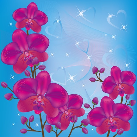 Bright background with purple orchids and decorations. Vector