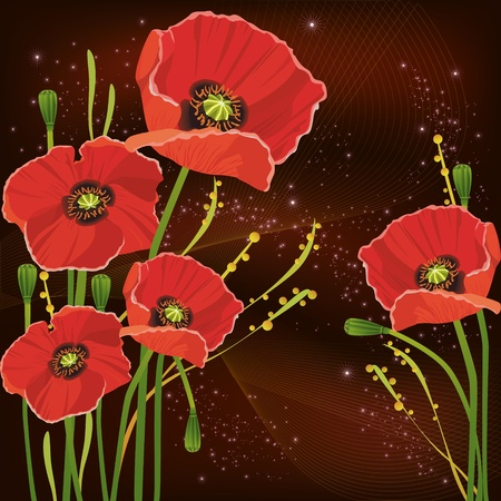 Background with beautiful red poppies Vector