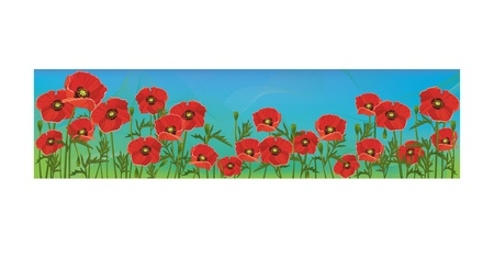 Floral banner with red poppies on blue background, template Stock Vector - 12215942