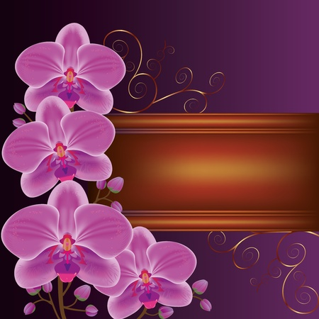 Background with exotic flower orchids, decorated with golden curls. Place for text Vector