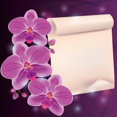 dark purple: Greeting card with exotic flower orchid and paper - place for text