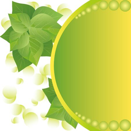 Eco background with fresh green leaves and sun, place for text Vector