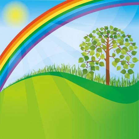 příroda: Letní nebo jarní příroda pozadí se stromem a duha