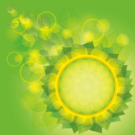 Light eco background with fresh green leaves, decorated bubble and circle Vector