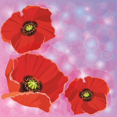 Greeting or invitation cards with red poppies for a wedding, birthday, anniversary,decorated circle and bubble Vector