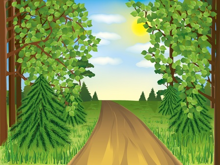sun road: Realistic landscape - spring or summer forest