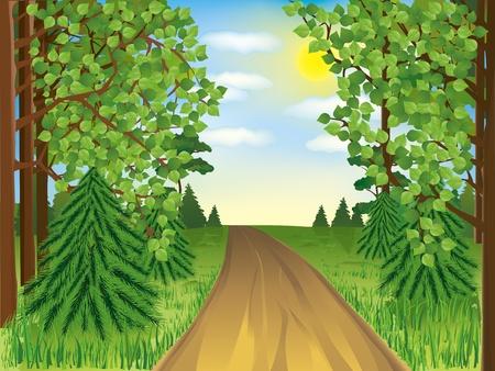 Realistic landscape - spring or summer forest