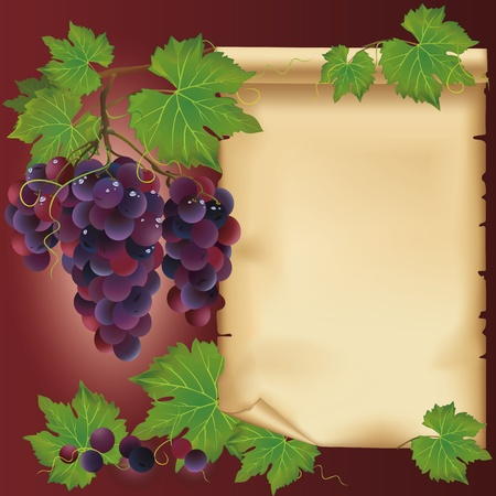 Background with black grapes and old paper - place for your text, decorated with grape leaves and grapevine Vector