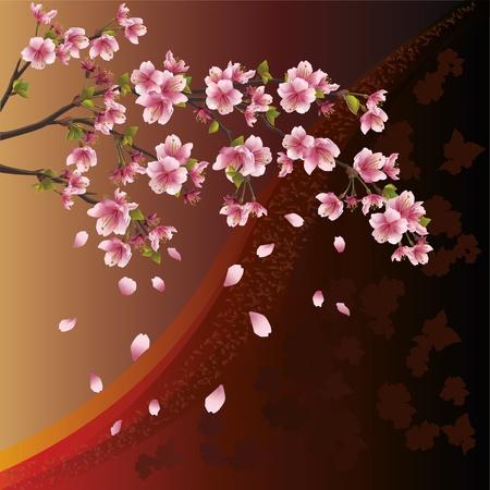 cherry branch: Background with sakura blossom - Japanese cherry tree and pattern Illustration