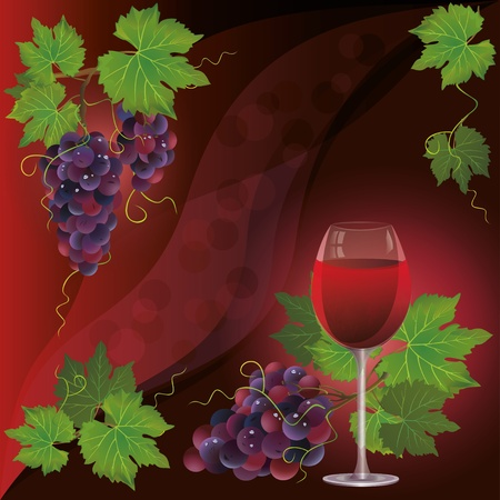 grape fruit: Wine glass and black grape, dark red vector background