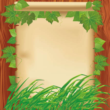 fall protection: Nature background with fresh green leaves and grass  Paper - place for text on wooden board
