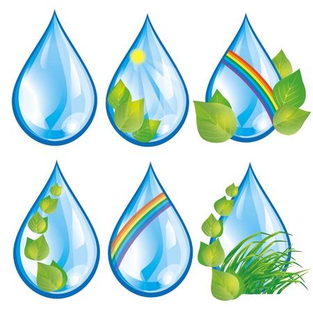 reflejo en el agua: Conjunto de gotas de agua con hojas verdes y frescas y hierbas, arco iris y el sol, aislados en fondo blanco Elementos para el dise�o ecol�gico Vectores