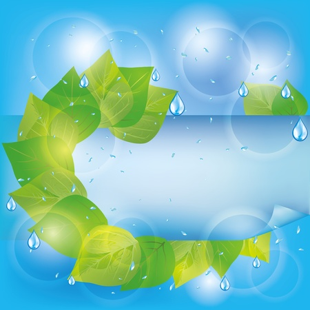 Spring eco background with fresh green leaves, water drops and paper - place for text Vector