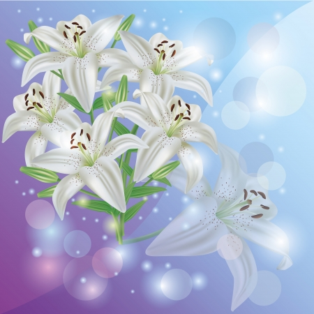 White lily flower background pastel, greeting or invitation card photo