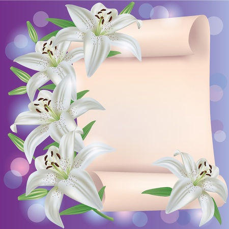 Greeting or invitation card with white lily flowers and paper sheet - place for text Vector