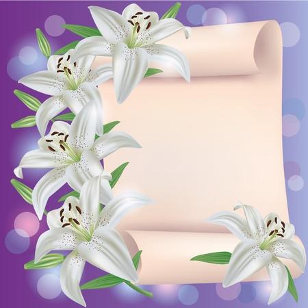 lily flowers: Saludo o tarjeta de invitaci�n con blancas flores de lis y la hoja de papel - el lugar de texto