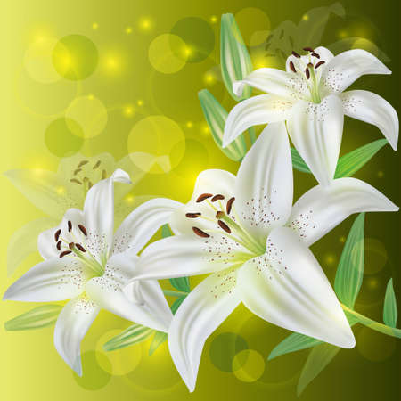 White lily flower background, greeting or invitation card photo