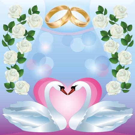 cisnes: Saludo de la boda o tarjeta de invitación con dos cisnes blancos, anillos de bodas, decoración blanco Ilustración vectorial rosas