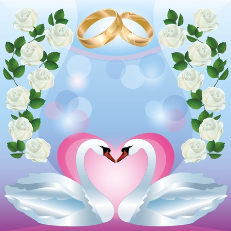 swan pair: Wedding greeting or invitation card with two white swans, wedding rings, decorated white roses  Vector illustration