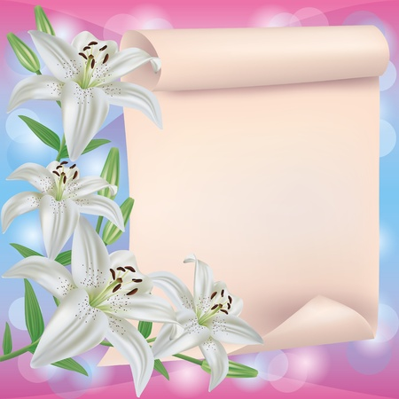 bright borders: Greeting or invitation card with white lily flowers and paper sheet - place for text